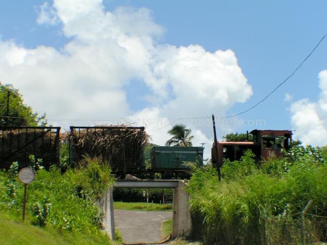 SSMC Locomotive and Cane Carts