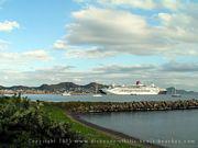 Photo 11: Basseterre Harbour