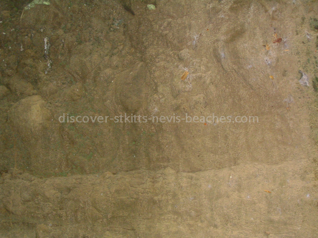 Carib petroglyphs at Bloody Point