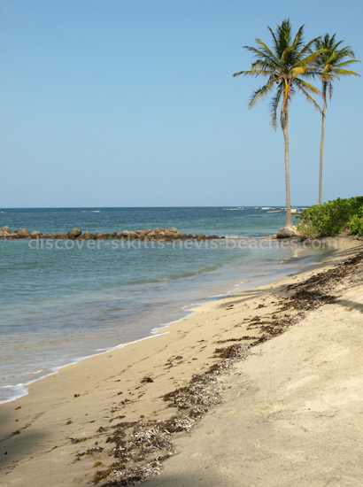 Photo of Nisbet Beach in Nevis.