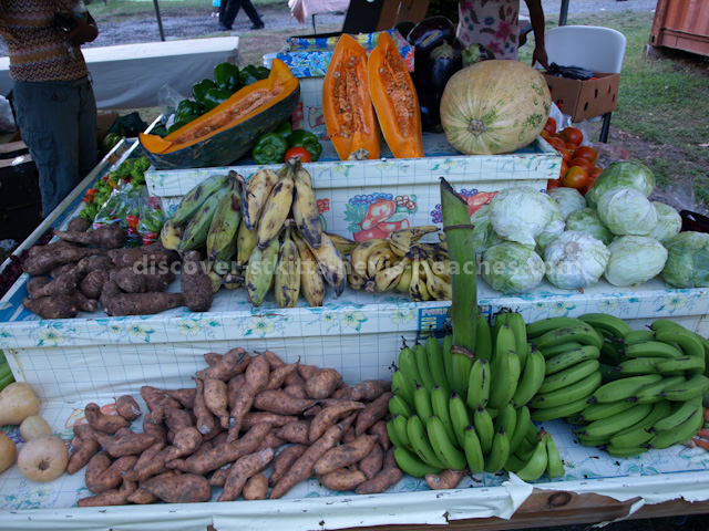 Sandy Point Farmer's Cooperative Stall