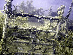 St Kitts scuba diving photo Deck rails of the River