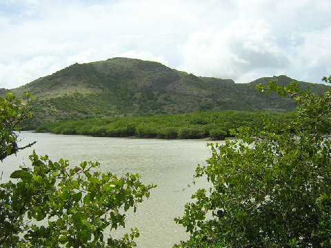 St Kitts Southeast Peninsula Safari photo- The Friar's Bay salt pond and surrounding hills