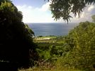 St Kitts tours and Island Safaris with Captain Sunshine Tours. St Kitts photo of Captain Sunshine Tours view from rainforest.