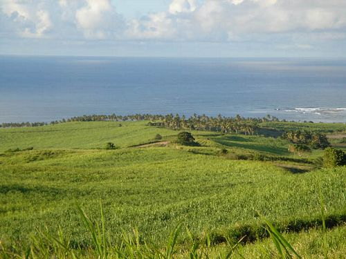 Beaumont Heights Photos: Land for Sale in St. Kitts