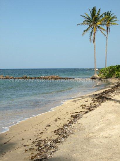 Photo of Nisbet Beach in Nevis.