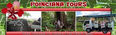 St Kitts tours by Poinciana Tours header image