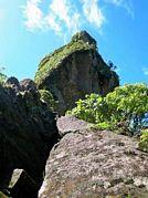 St Kitts tours with David Swanston of Poinciana Tours. St Kitts photo of Mount Liamuiga taken on a St Kitts volcano tour with Poinciana Tours.