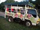 St Kitts tours with David Swanston of Poinciana Tours. St Kitts photo of Poinciana Tours open air safari jeep.