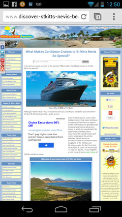 DSKNB website viewed on mobile phone before mobile site