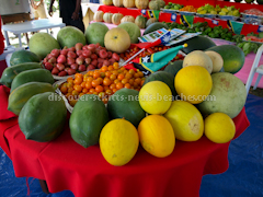Locally grown fruits grown by the Tawainese Agricultural Mission on display at the 2013 Agriculture Department Open Day